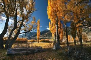 sierra autunno foto