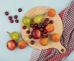 vista dall'alto del modello di frutta