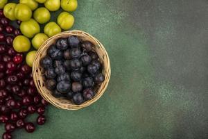 vista dall'alto di piccole prugnole di frutta blu-nere acide