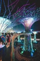 singapore, 2018: i viaggiatori affollano il marina bay garden di notte