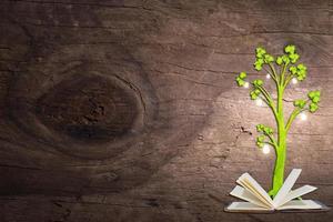 concetto di amore della natura su fondo in legno foto