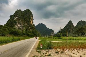 Vietnam, 2017: lavoratori delle risaie e famiglia viaggiano in moto foto
