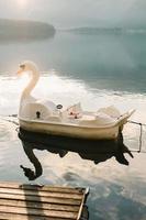 hallstatt, austria, 2020 - pedalò swan su acque calme