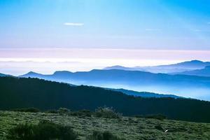 montagne ed erba verde