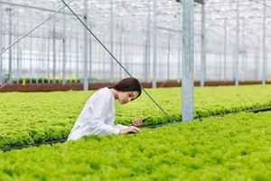 ricercatrice che studia piante nella casa greeen