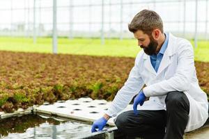 ricercatore prende l'acqua in una provetta che si siede in una serra