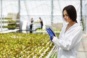 ricercatrice legge le informazioni da un tablet in piedi nella serra