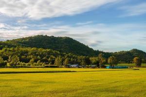 campagna di uthai thani, thailandia