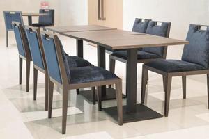 tavolo e sedie da pranzo foto
