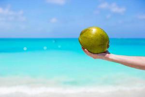 persona che tiene una noce di cocco su una spiaggia tropicale