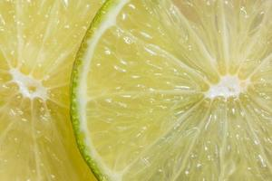 fette di limone, da vicino