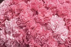 fiori in tessuto soft focus
