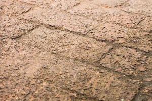 pavimentazione in mattoni rustici foto