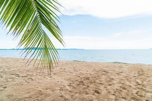 sfondo resort di palma
