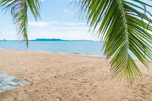 sfondo resort di palma foto
