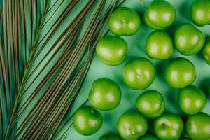 primo piano di prugne acide e una foglia di palma su uno sfondo verde