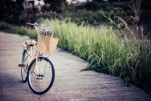 bicicletta parcheggiata in strada nel parco