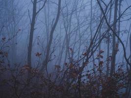 autunno scuro nelle montagne dell'aquila