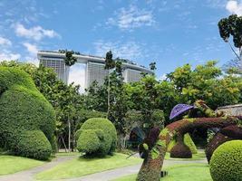 marina bay sands, singapore, 2020 - siepi verdi topiaria vicino a un edificio