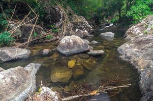 ruscello nel parco nazionale delle cascate di khao chamao foto