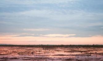 alba su un lago