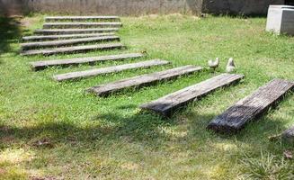 sentiero in legno in un giardino