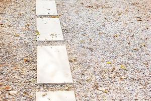 passerella vuota percorso di cemento sul pavimento di pietra in giardino sulla bella giornata di sole nebbioso foto