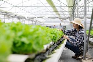 donna che controlla le piante foto