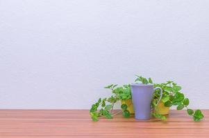 tazza di caffè e piante sulla scrivania foto
