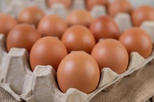 uova di gallina biologiche crude