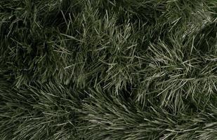 struttura dell'albero di Natale. sfondo verde con rami. foto