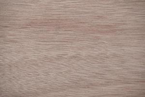 struttura interna del legname priorità bassa astratta di legno marrone