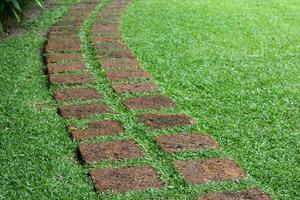 percorso formato lastre di pietra in un giardino