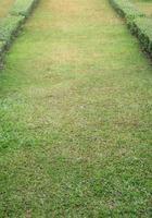 percorso del campo in erba