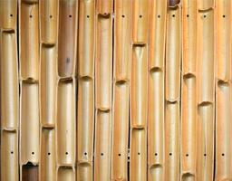 struttura della parete di bambù