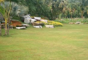 thailandia, 2020 - giardino durante il giorno