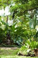 parco in thailandia
