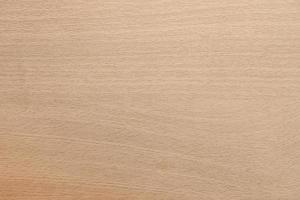 fondo in legno chiaro foto