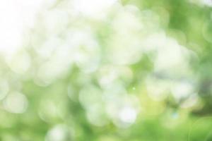 bokeh verde sfocato foto