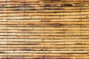 bambù giallo per lo sfondo foto