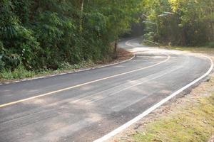 strada sinuosa nella foresta foto