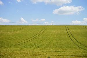 un campo in erba sotto il cielo foto