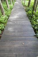 ponte di legno in un parco in thailandia