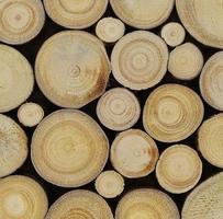 fette di legno rotonde