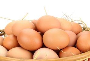marrone uova nel paniere
