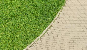 percorso di mattoni ed erba foto