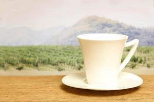 tazza bianca davanti a un campo foto