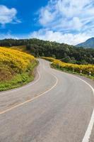 strada in cima alla montagna