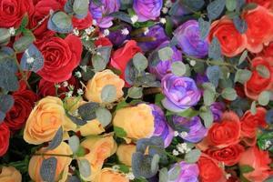 rose colorate e foglie foto