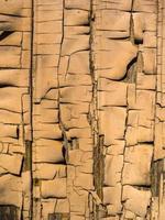 tavole di legno con vernice scrostata per texture o sfondo foto